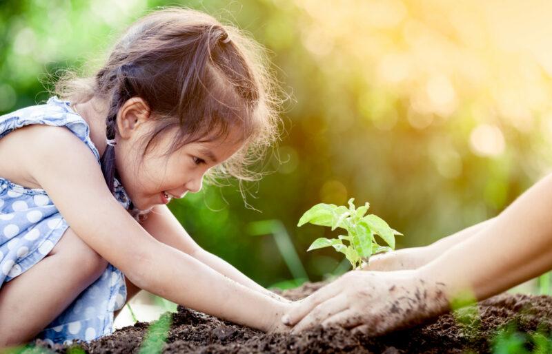 Une jeune fille sourit en mettant une plante en terre, ses mains guidées par celles d'une personne plus âgée.