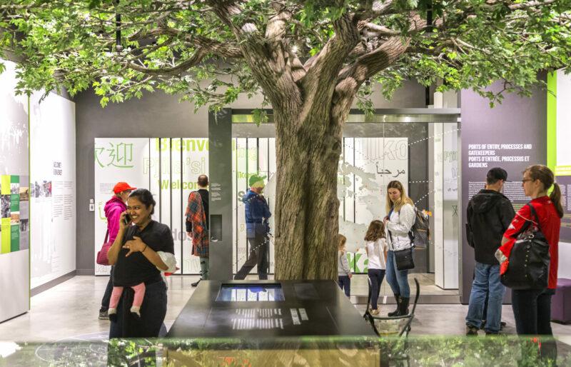 Des visiteurs du musée se promènent et explorent l'exposition sur l'histoire de l'immigration canadienne. Un arbre est au centre de la pièce et des panneaux d'exposition sont disposés le long des murs.